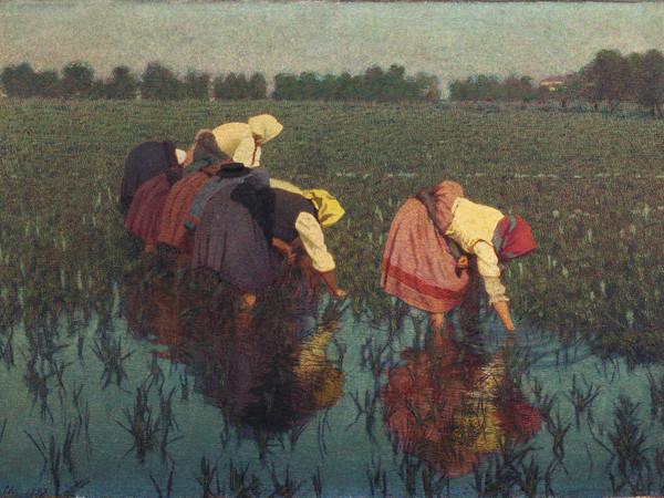 Angelo Morbelli, Risaiuole, 1897, olio su tela, 40x60 cm. Collezione privata