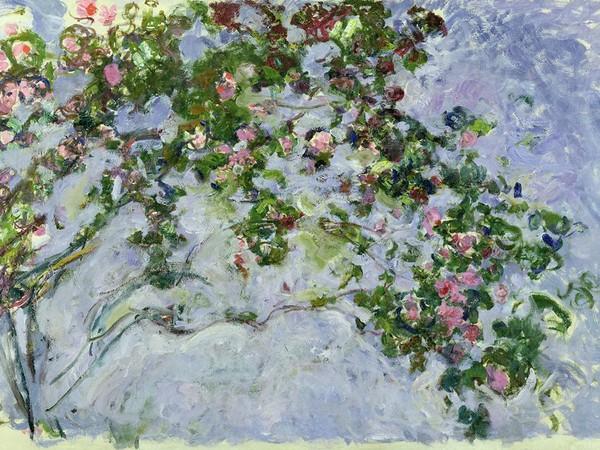 Claude Monet, <em>Le rose</em>, 1925-1926. Olio su tela, 130x200 cm. Parigi, Musée Marmottan Monet, lascito Michel Monet, 1966 © Musée Marmottan Monet, Paris / Bridgeman Images