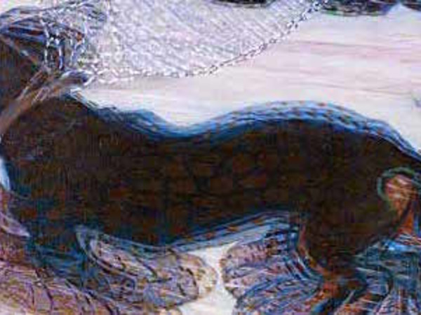 Giacomo Balla, Dinamismo di un cane al guinzaglio