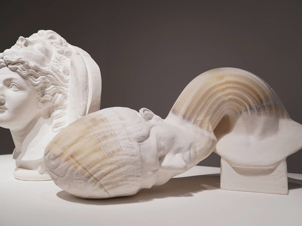 Li Hongbo, The teaching Instruments series