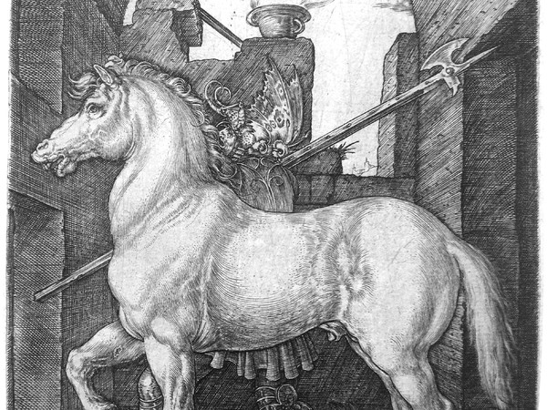 Albrecht Dürer, Il Piccolo Cavallo