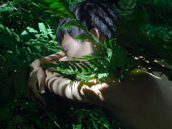 Zheng Bo, Pteridophilia 1, 2016. Video (4K, color, sound), 17 min.