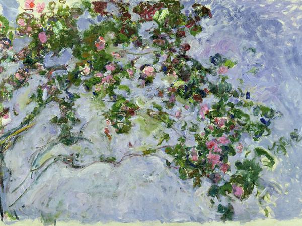Claude Monet (1840 - 1926), <em>Le rose</em>, 1925 - 1926, Olio su tela, 130 x 200 cm, Parigi, Musée Marmottan Monet, Lascito Michel Monet, 1966, Inv. 5096 | © Musée Marmottan Monet, Académie des Beaux-Arts, Paris