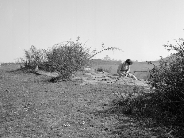 Sud Etruria Survey John Bryan Ward-Perkins a cura di Valerie Scott e Elisabetta Portoghese