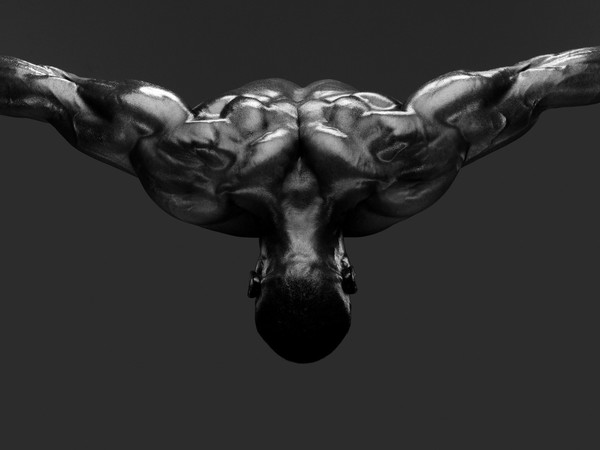 Howard Schatz. Body Power