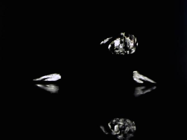Lorenzo Puglisi, Narcissus, 2015, olio su tela, 200x150cm