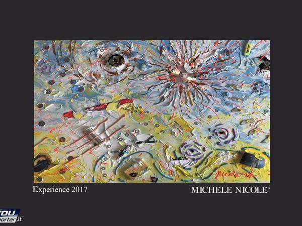 Michele Nicolè, Experience, 2017