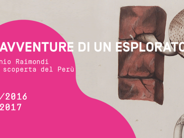 Le avventure di un esploratore. Antonio Raimondo e la scoperta del Perù