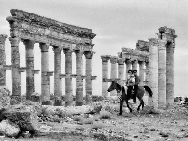 <em>La Via Colonnata</em>, Palmira | Foto &copy; Elio Ciol