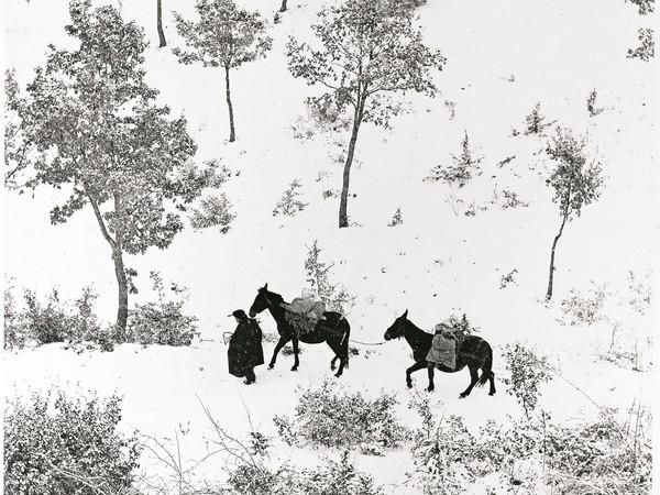 Fulvio Roiter, <em>Norcia, Umbria, Terra di San Francesco</em>, Dettaglio, 1955 | © Fondazione Fulvio Roiter<br />
