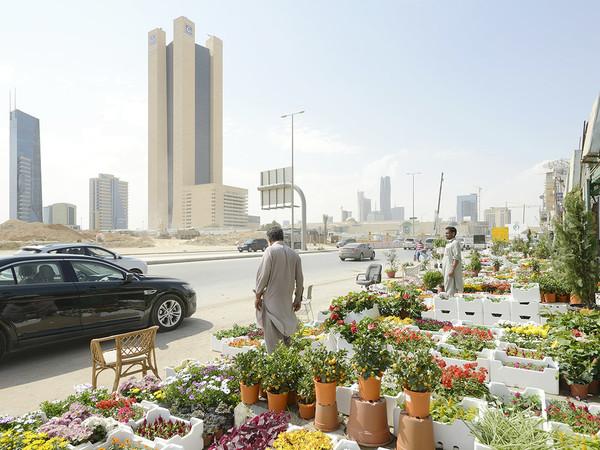 Michele Nastasi, Plant Souk, Riyadh Arabia Saudita, 2017