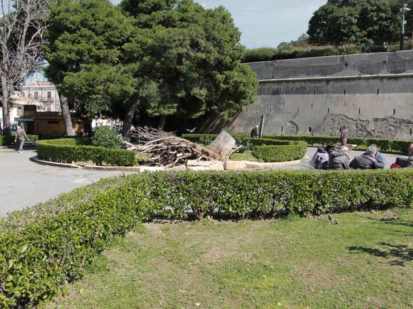 Stefania Galegati Shines, Monumento al cadere, Piazza Indipendenza, Palermo