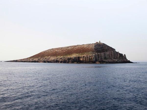 Desertmed. Le isole deserte del Mediterraneo, Museo Civico d'Arte Contemporanea Villa Croce, Genova 2013