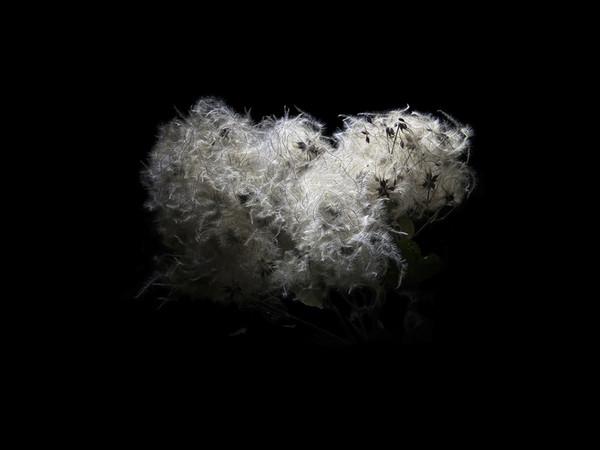Enzo Sbarra, Back to Black, 2018, fotografia con tecnica mista, cm.95x150