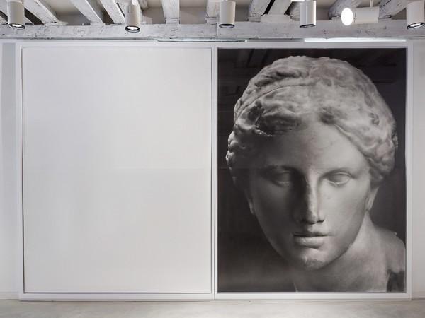 Akira Arita, <em>Tête d'Aphrodite</em>, matita su carta, 2014, foto di Enrico Fiorese, Galleria Marignana Arte, Venezia.
