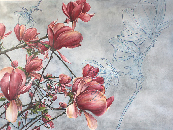 Cristina Iotti, Magnolia in bloom, 2019, acquerello, matite colorate su carta, cm. 50x70