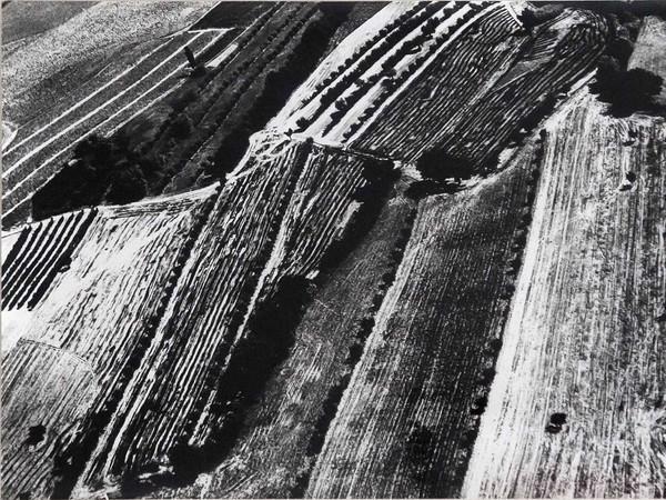 Mario Giacomelli, Presa di coscienza sulla natura, 385x280 mm | Courtesy of Studio Guastalla Arte Moderna e Contemporanea / The Lone T art space | Foto: Cristian Castelnuovo