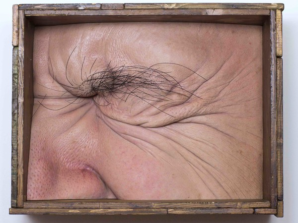 Valter Adam Casotto, Eye Box