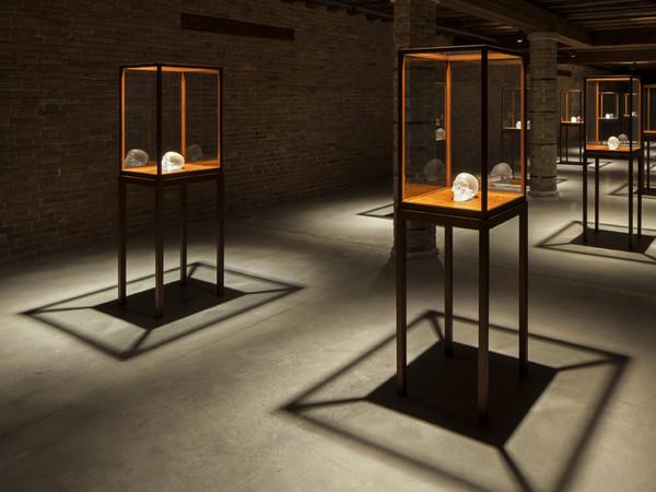 Sherrie Levine, <em>Crystal Skull</em>, 2010. Cast glass with glass vitrines© Sherrie Levine, Installation view at Punta della Dogana, 2013. Ph:© Palazzo Grassi, ORCH orsenigo_chemollo<br />
