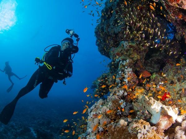 Rane Nere nel blu. Breve storia di subacquea, associazionismo, esplorazione