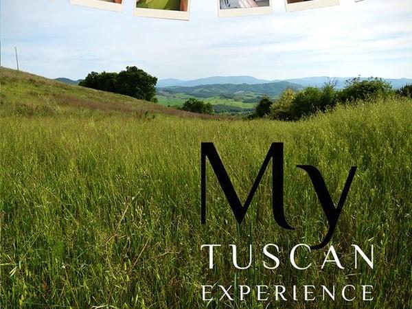 My Tuscan Experience. Feed Art Meet Art, iSculpture Gallery, San Gimignano (SI)