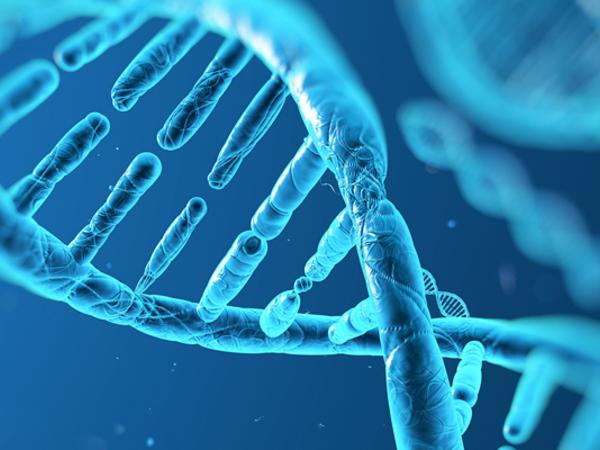 DNA. Il grande libro della vita da Mendel alla genomica