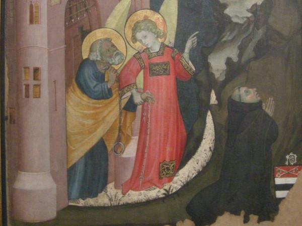 Storie di san Pietro