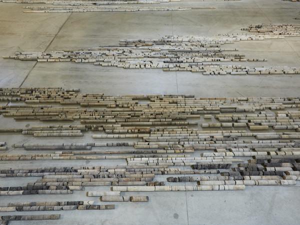 Giorgio Andreotta Calò, Produttivo, 2018-2019, installazione ambientale, dettaglio dell'allestimento presso Pirelli HangarBicocca, Milano. Commissionata e prodotta da Pirelli HangarBicocca