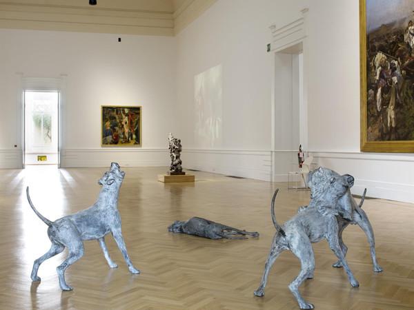 Liliana Moro, Underdog, Galleria Nazionale d'Arte Moderna e Contemporanea, Roma