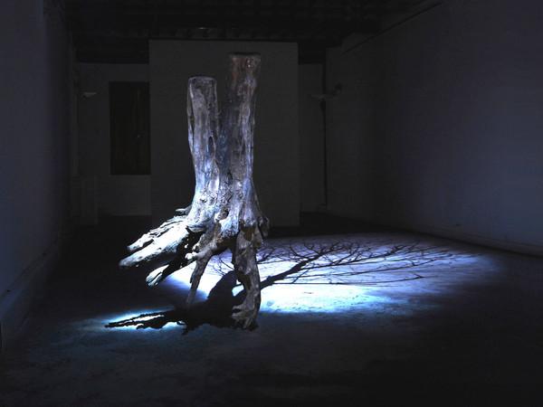 Andrea Santarlasci, L'altra luce del giorno, 2019. Veduta dellinstallazione frammento di tronco di acacia con radice sabbia di fiume e proiezione video