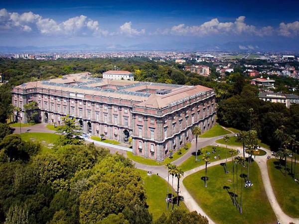 Museo e Real Bosco di Capodimonte, Napoli