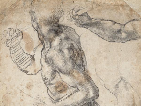 Michelangelo Buonarroti (1475 -1564), <em>Nudo maschile e dettagli anatomici</em>, 1504 o 1506, Gesso nero e bianco, Senza cornice 40.4 x 25.8 cm, Museo Teylers, Haarlem, Acquistato nel 1790 | Immagine © Teylers Museum, Haarlem EX.2020.1.3