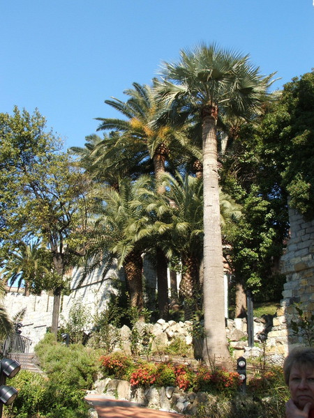 Parco del Castello d'Albertis