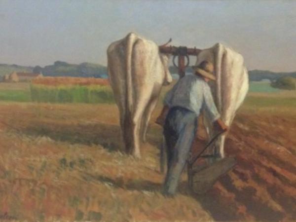 Giovanni Malesci, Buoi, olio su tavola