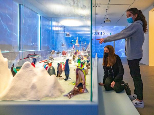 L'Arca di vetro. La collezione di animali di Pierre Rosenberg, installation view I Ph. Enrico Fiorese