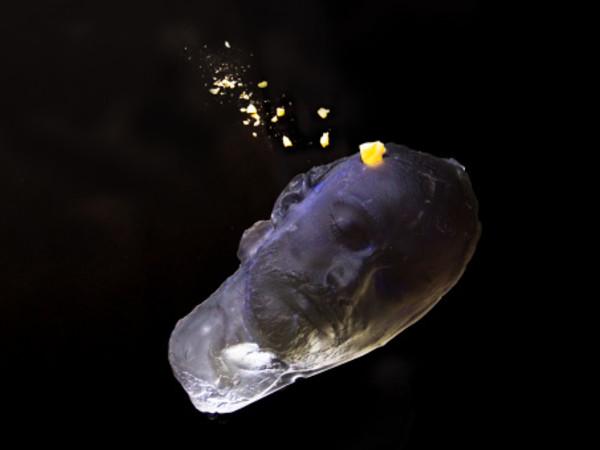 Christian Fogarolli, Allégorie de la folie, 2018, installazione, calco in vetro, pietre, luce UV dimensioni ambientali