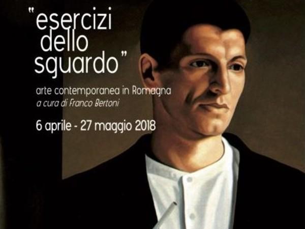 Esercizi dello sguardo. Arte contemporanea in Romagna