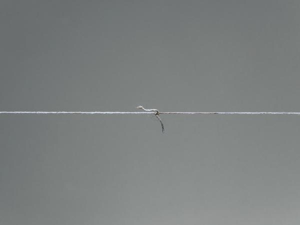 Teresa Margolles, 36 cuerpos, 2010, dettaglio. Musèe d'art contemporain de Montrèal, 2017
