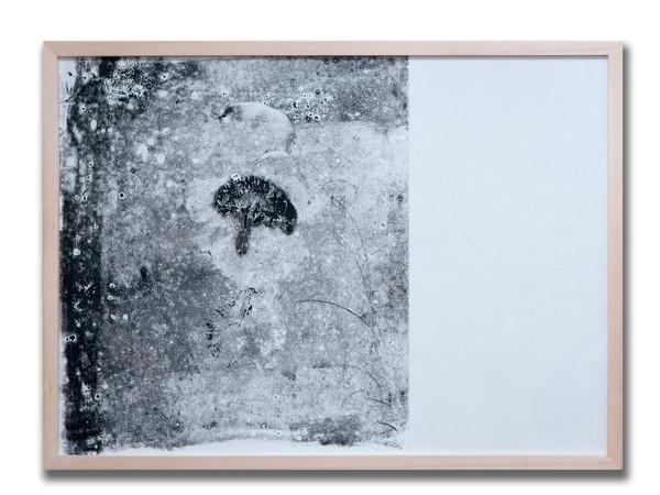 Marta Galbusera, Radiografie di tempo, serie 2017. Frottage, inchiostro su carta