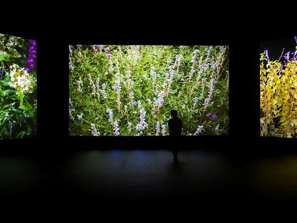 Quayola, Jardins d'Été, 4k video. Installation view at Opificio 31 in Milan as part of Milan Design Week – IQOS Pathfinder Project – Jardins d'Eté by Quayola