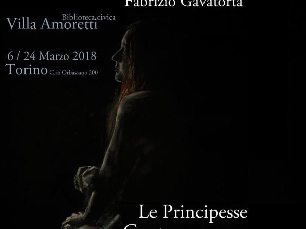 Fabrizio Gavatorta, Le principesse contemporanee, Biblioteca civica Villa Amoretti, Torino