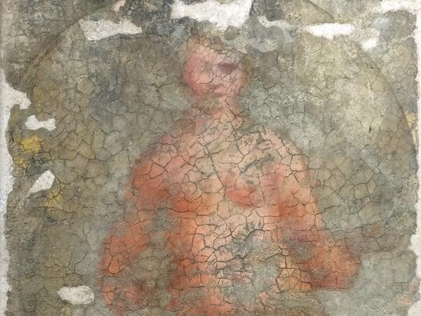 Particolare della Nuda di Giorgione prima del restauro