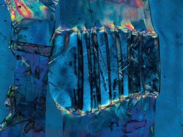 Bruno Munari, Vetrini a luce polarizzata. Materiali vari