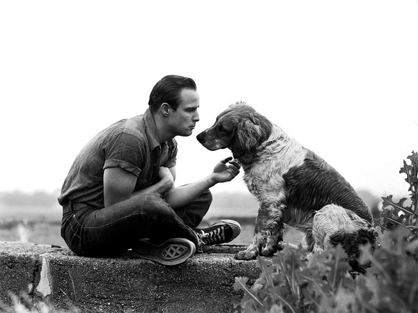 Art Shay, Brando and the Family Dog, 1950. Silver Gelatin Print, 16 x 20 inches