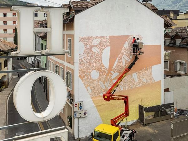 Tellas, Ricorda la Bellezza, Bolzano, work in progress