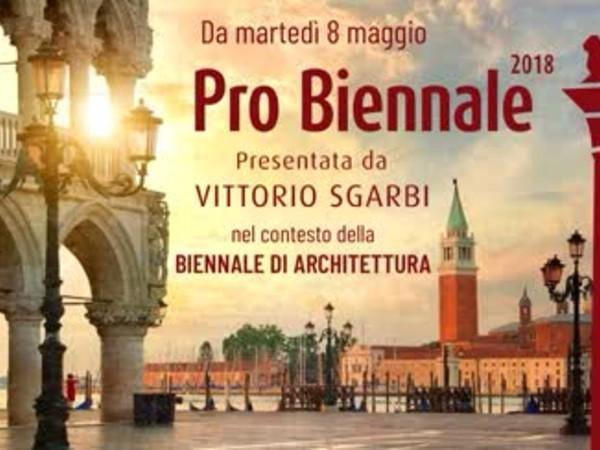 Pro biennale 2018 mostra venezia palazzo grifalconi for Biennale venezia 2018