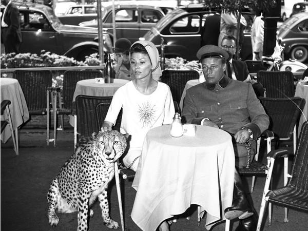 Rino Barillari, Deminich Irina Nick e ghepardo, Via Veneto, Roma