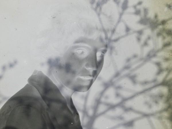 Calò Alessandra, dalla serie Secret Garden, 2017, stampa fotografica su carta cotone con intervento calcografico, cm. 40x40, particolare