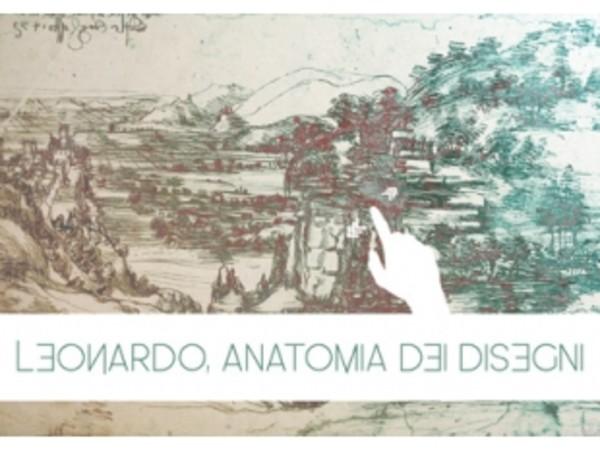 Leonardo, anatomia dei disegni, Museo Leonardiano, Vinci