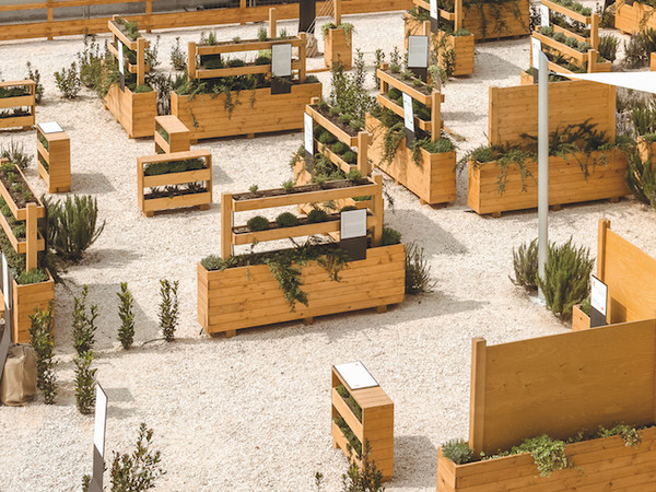 Interno Verde Mostra Ferrara Sedi Varie